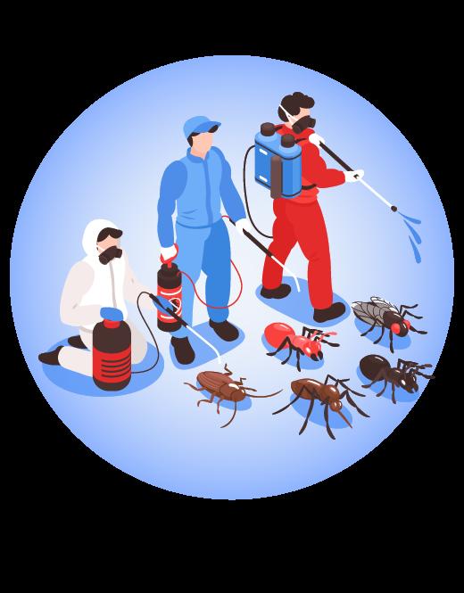 Pest Control Expert Penrith, NSW